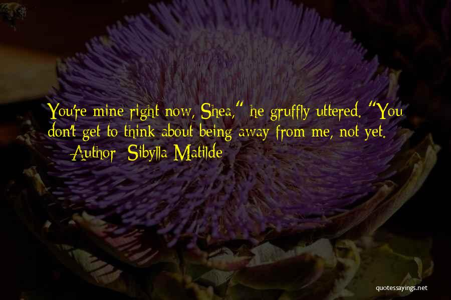 You're Not Mine Yet Quotes By Sibylla Matilde
