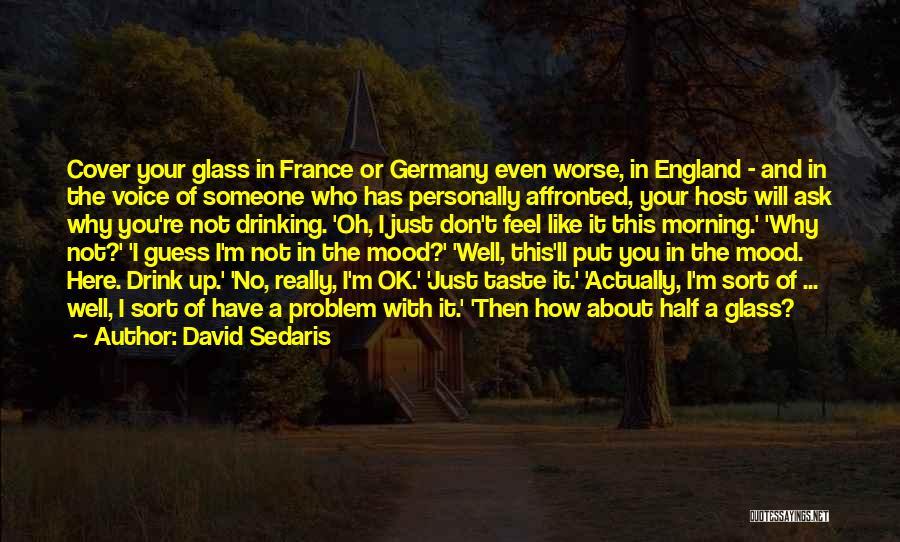 You're Not Ok Quotes By David Sedaris