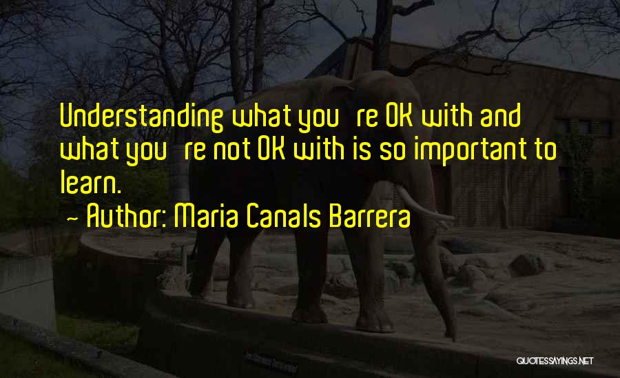 You're Not Ok Quotes By Maria Canals Barrera