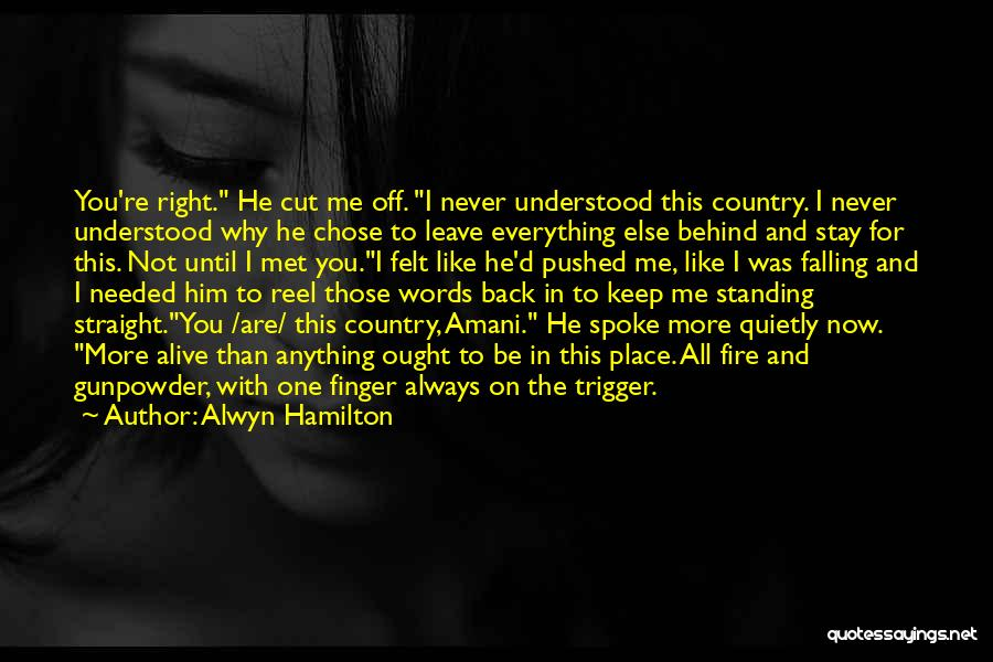You're The Right One Quotes By Alwyn Hamilton