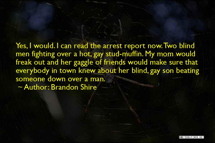 You're Under Arrest Quotes By Brandon Shire