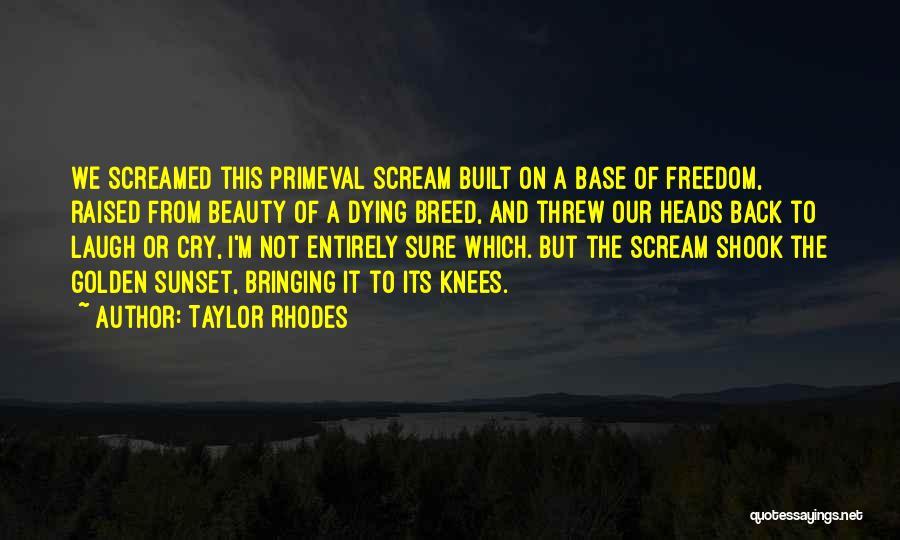 Youth And Freedom Quotes By Taylor Rhodes