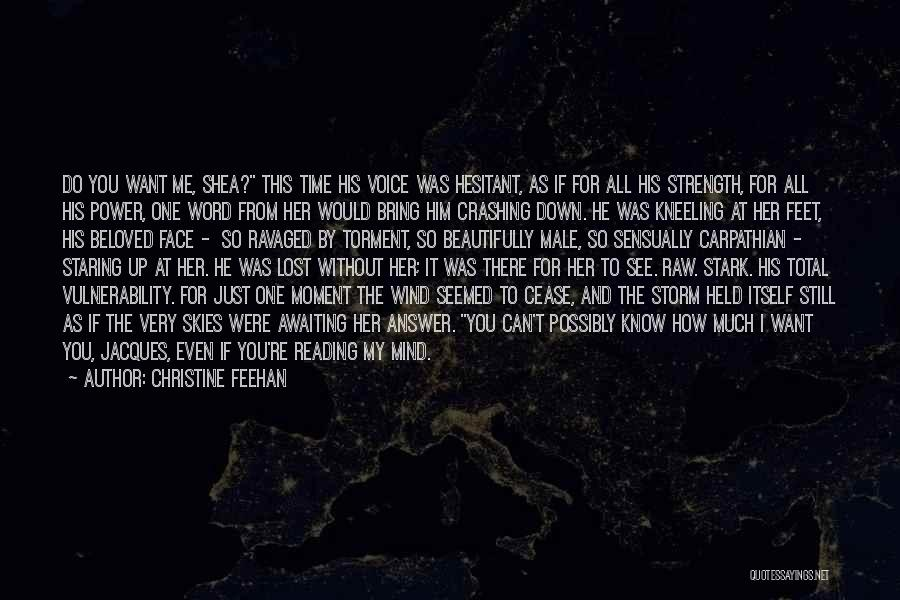 You've Lost Him Quotes By Christine Feehan