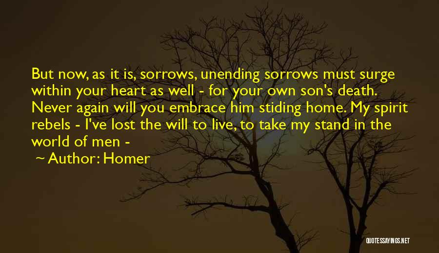 You've Lost Him Quotes By Homer