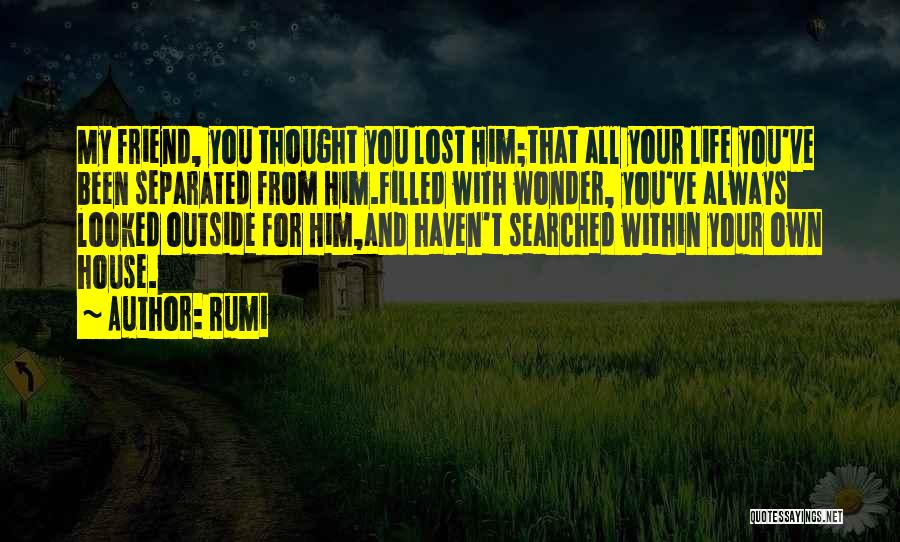 You've Lost Him Quotes By Rumi