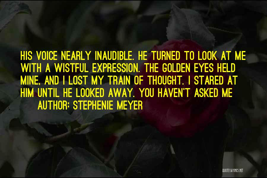 You've Lost Him Quotes By Stephenie Meyer