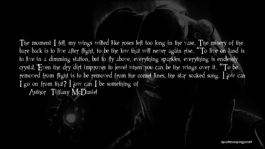 You've Lost Him Quotes By Tiffany McDaniel