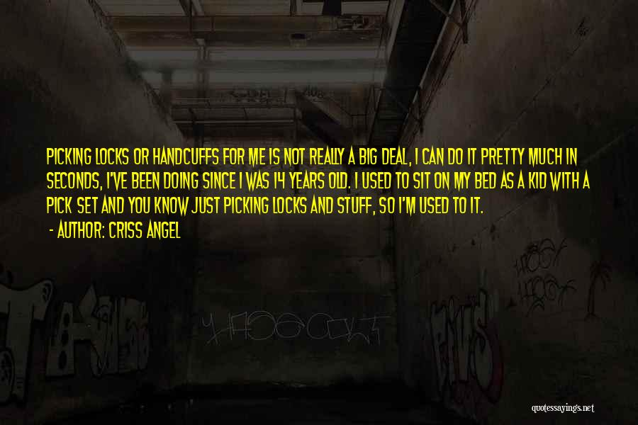 You've Used Me Quotes By Criss Angel