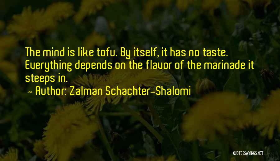 Zalman Schachter-Shalomi Quotes 663455