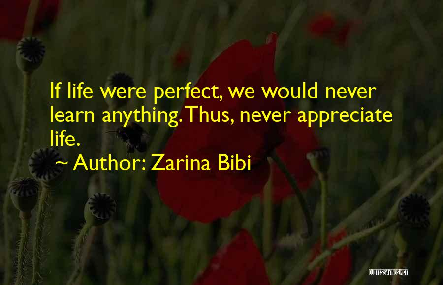 Zarina Bibi Quotes 943466
