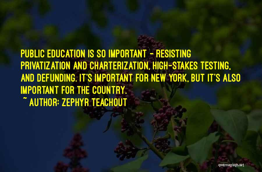 Zephyr Teachout Quotes 928445