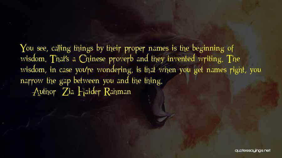 Zia Haider Rahman Quotes 1363905