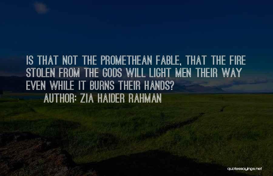 Zia Haider Rahman Quotes 163914