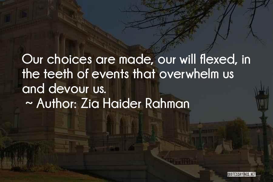 Zia Haider Rahman Quotes 1673758