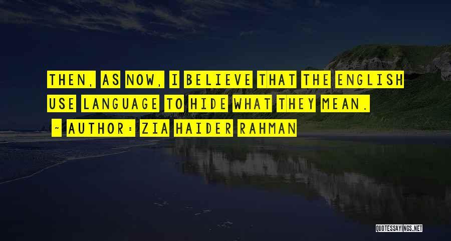 Zia Haider Rahman Quotes 320965