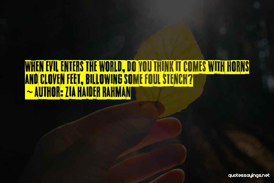 Zia Haider Rahman Quotes 479713
