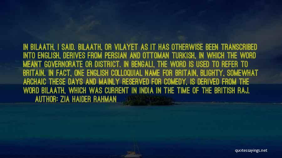 Zia Haider Rahman Quotes 559589