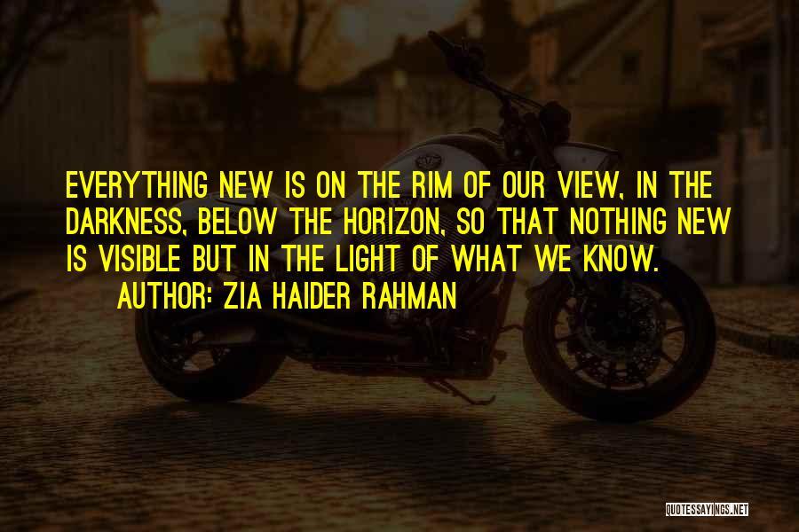 Zia Haider Rahman Quotes 567885