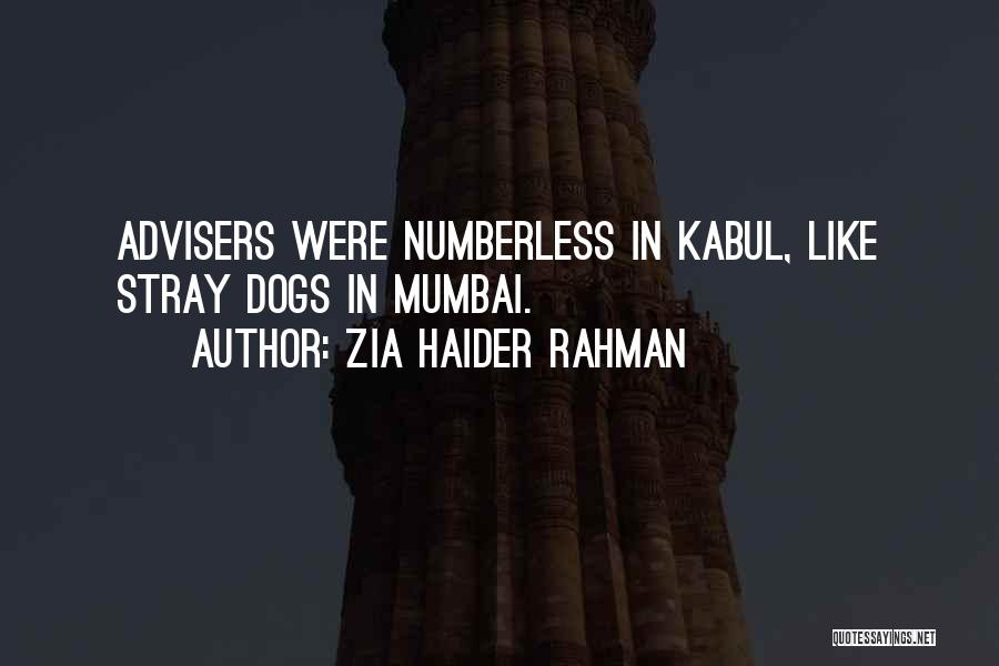 Zia Haider Rahman Quotes 929826