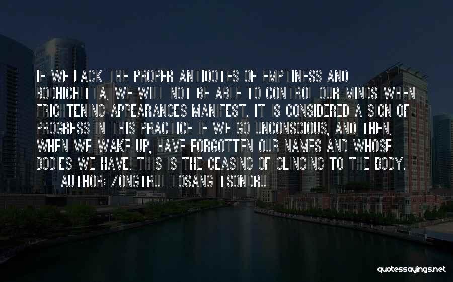 Zongtrul Losang Tsondru Quotes 1124080
