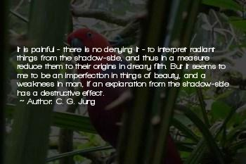 Jung Shadow Side Quotes